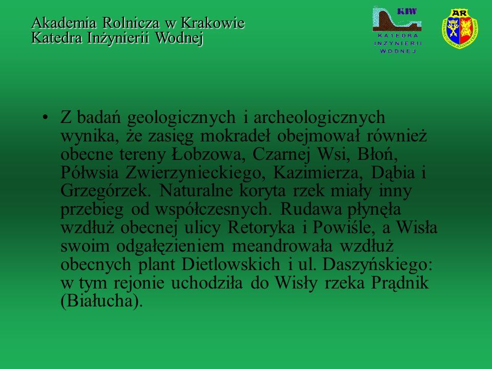Z badań geologicznych i archeologicznych wynika, że zasięg mokradeł obejmował również obecne tereny Łobzowa, Czarnej Wsi, Błoń, Półwsia Zwierzynieckie