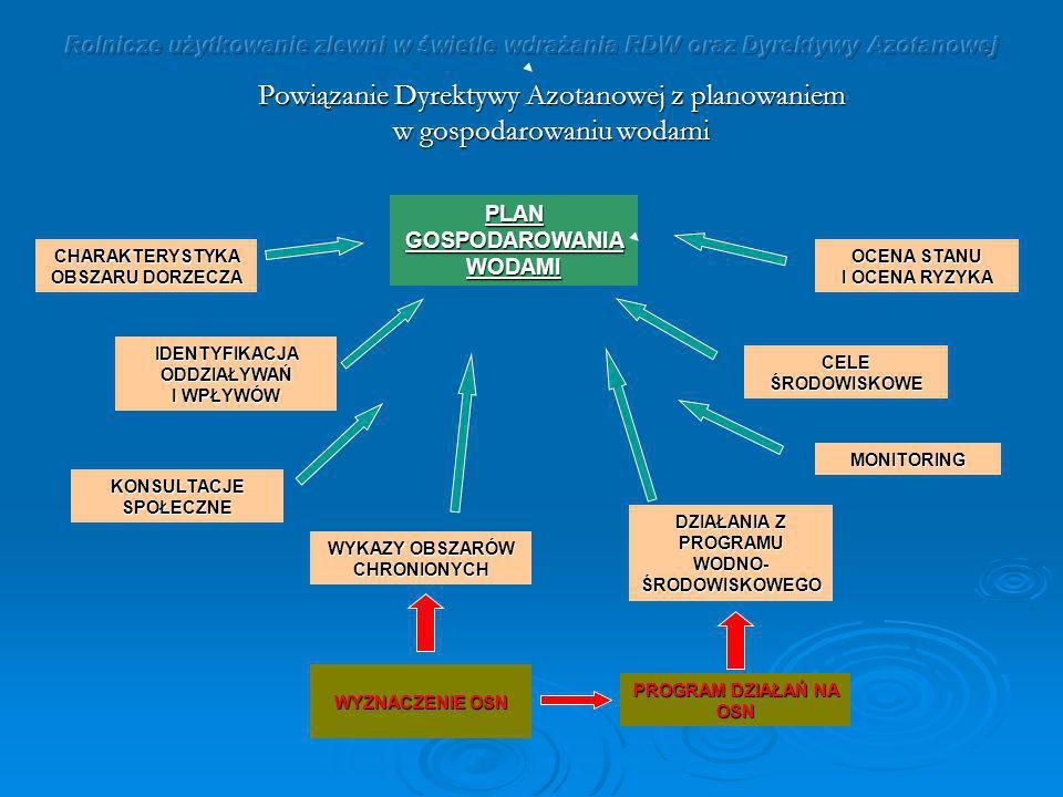 Powiązanie Dyrektywy Azotanowej z planowaniem w gospodarowaniu wodami PLAN GOSPODAROWANIA WODAMI PROGRAM DZIAŁAŃ NA OSN WYZNACZENIE OSN CHARAKTERYSTYK