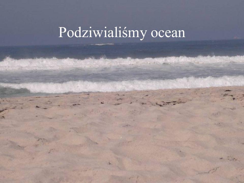 Podziwialiśmy ocean