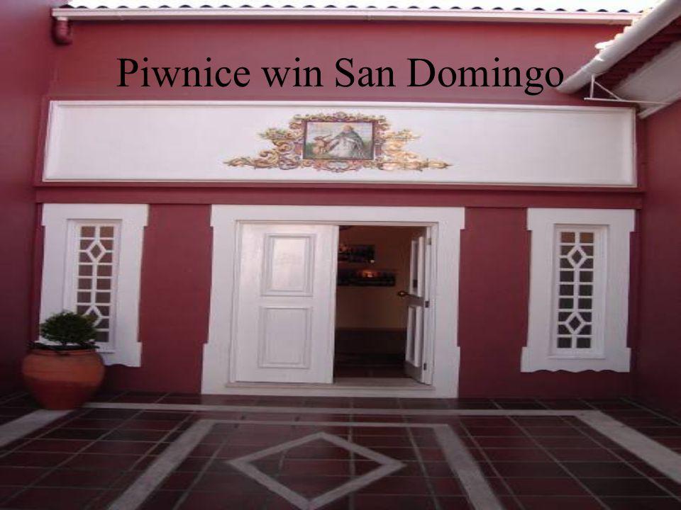 Piwnice win San Domingo
