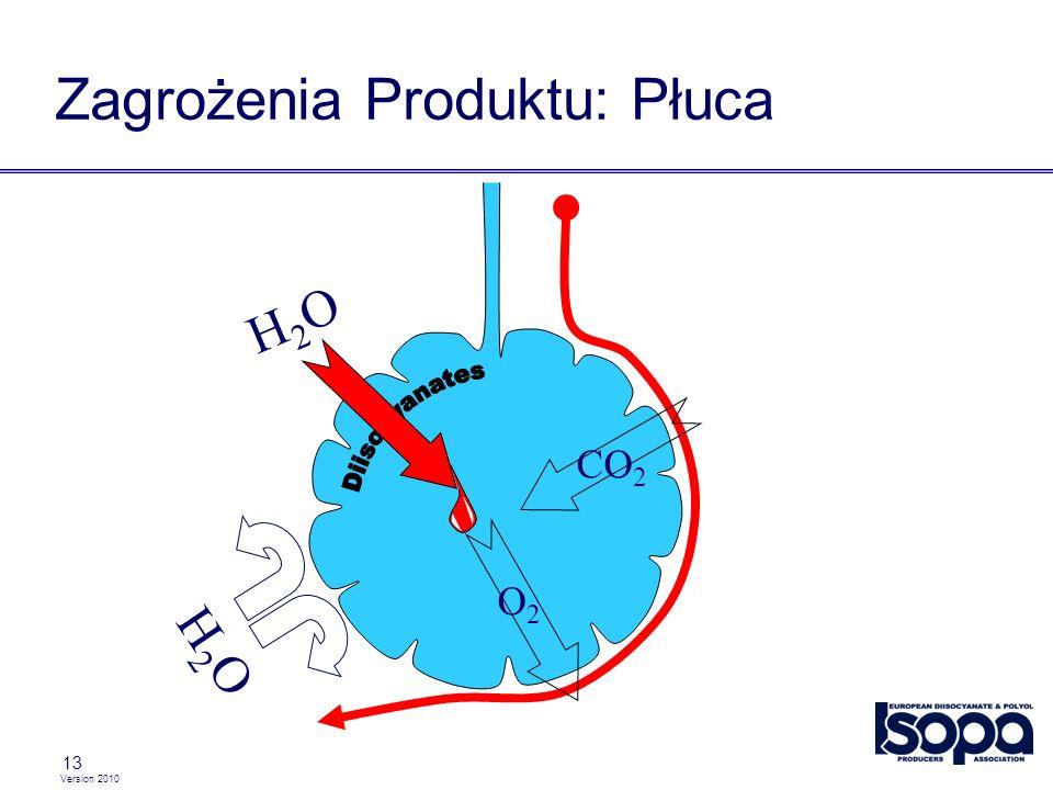Version 2010 13 Zagrożenia Produktu: Płuca CO 2 O2O2 H2OH2O H2OH2O