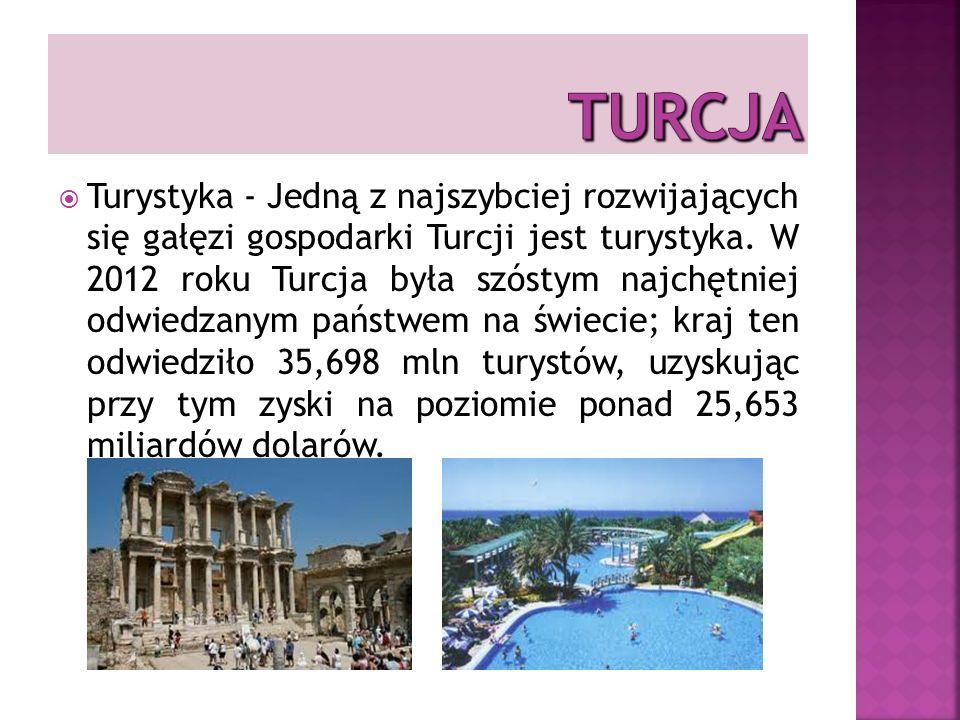 Turystyka - Jedną z najszybciej rozwijających się gałęzi gospodarki Turcji jest turystyka.