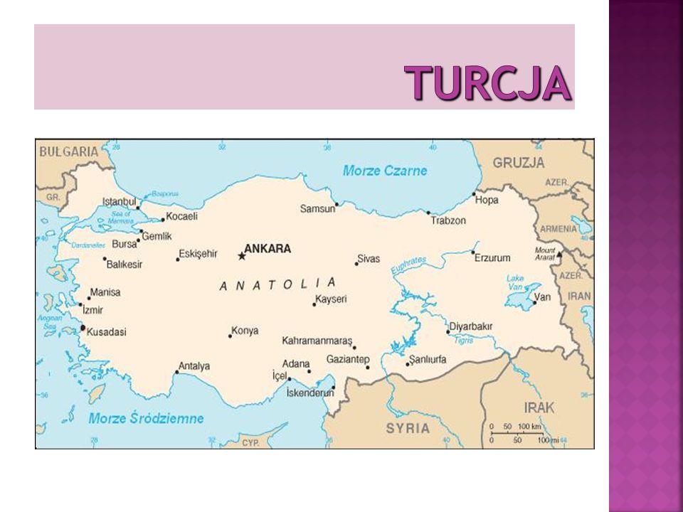 SĄSIEDZI TURCJI północny zachód – Grecja i Bułgaria północny wschód – Gruzja i Armenia wschód – Iran południowy wschód – Syria i Iran