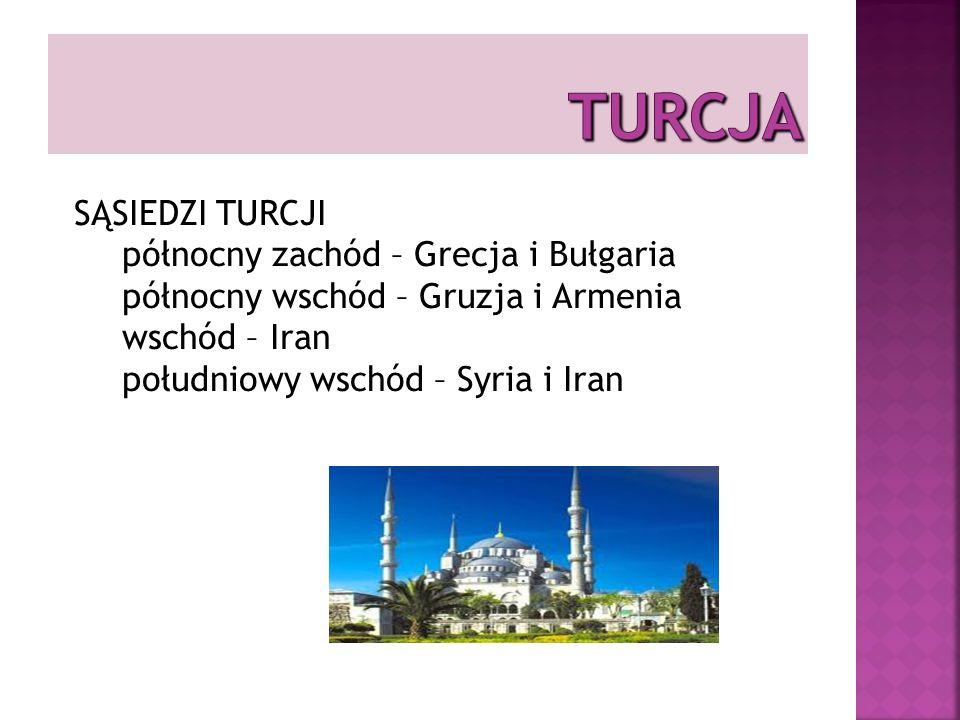 Zwyczaje kulturowe Turcy znani są z gościnności i życzliwego traktowania przedstawicieli innych kultur.