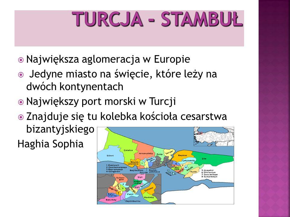 Największa aglomeracja w Europie Jedyne miasto na święcie, które leży na dwóch kontynentach Największy port morski w Turcji Znajduje się tu kolebka kościoła cesarstwa bizantyjskiego Haghia Sophia