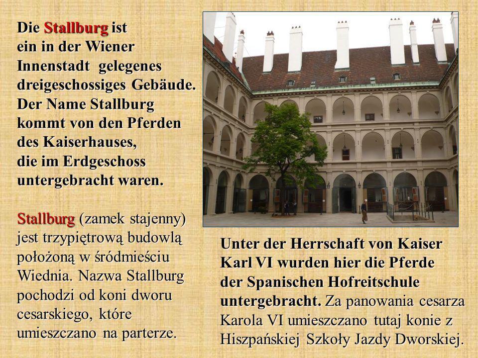 Die Stallburg ist ein in der Wiener Innenstadt gelegenes dreigeschossiges Gebäude. Der Name Stallburg kommt von den Pferden des Kaiserhauses, die im E