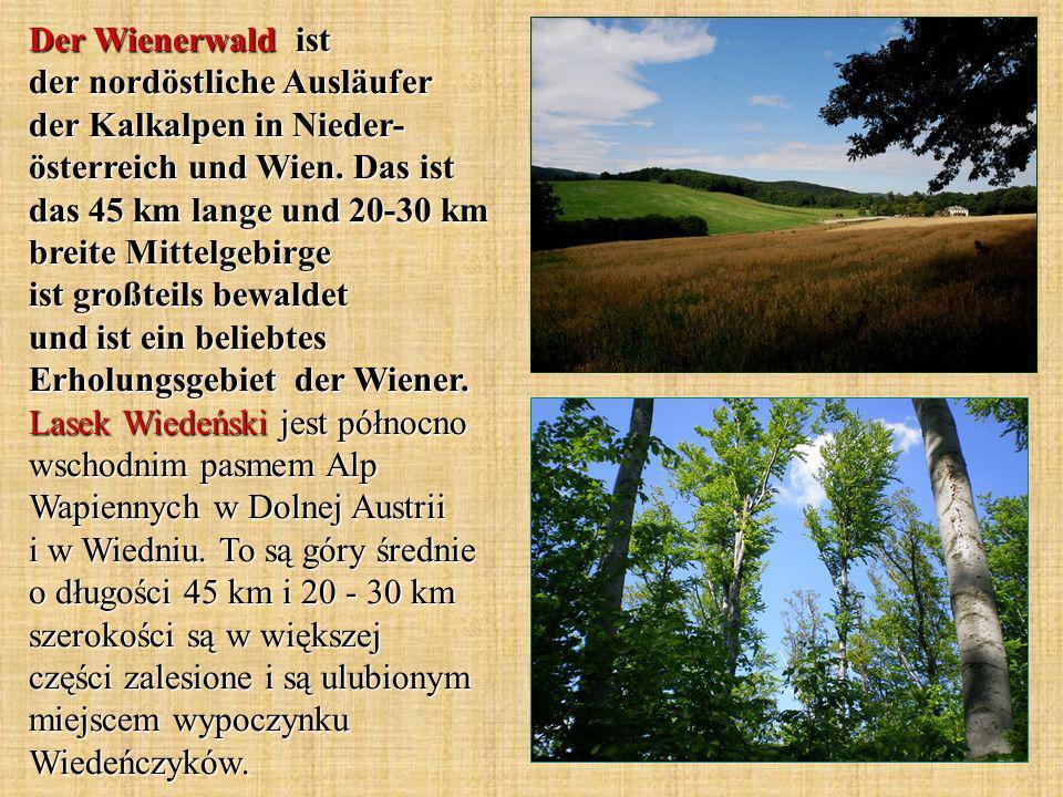 Der Wienerwald ist der nordöstliche Ausläufer der Kalkalpen in Nieder- österreich und Wien. Das ist das 45 km lange und 20-30 km breite Mittelgebirge