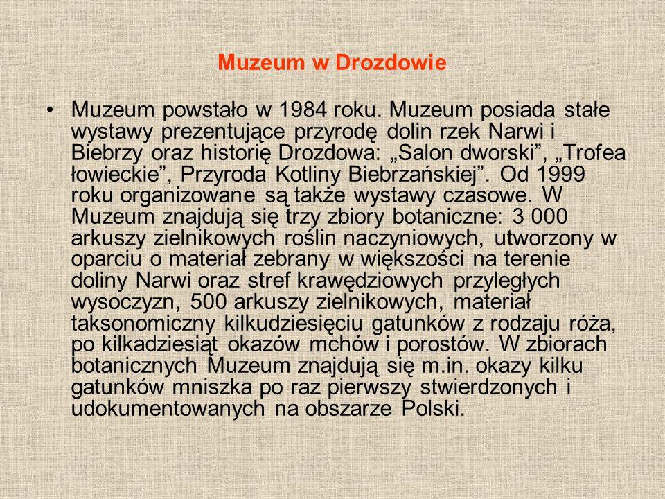 Muzeum w Drozdowie Muzeum powstało w 1984 roku. Muzeum posiada stałe wystawy prezentujące przyrodę dolin rzek Narwi i Biebrzy oraz historię Drozdowa:
