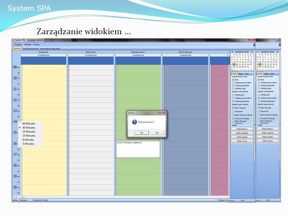 System SPA Zarządzanie widokiem …