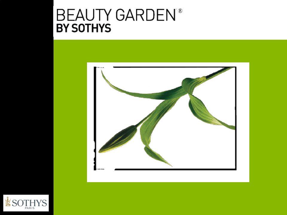 Logo – kosmetyk organiczny pomiędzy 99,5% a 100% składników jest pochodzenia naturalnego.