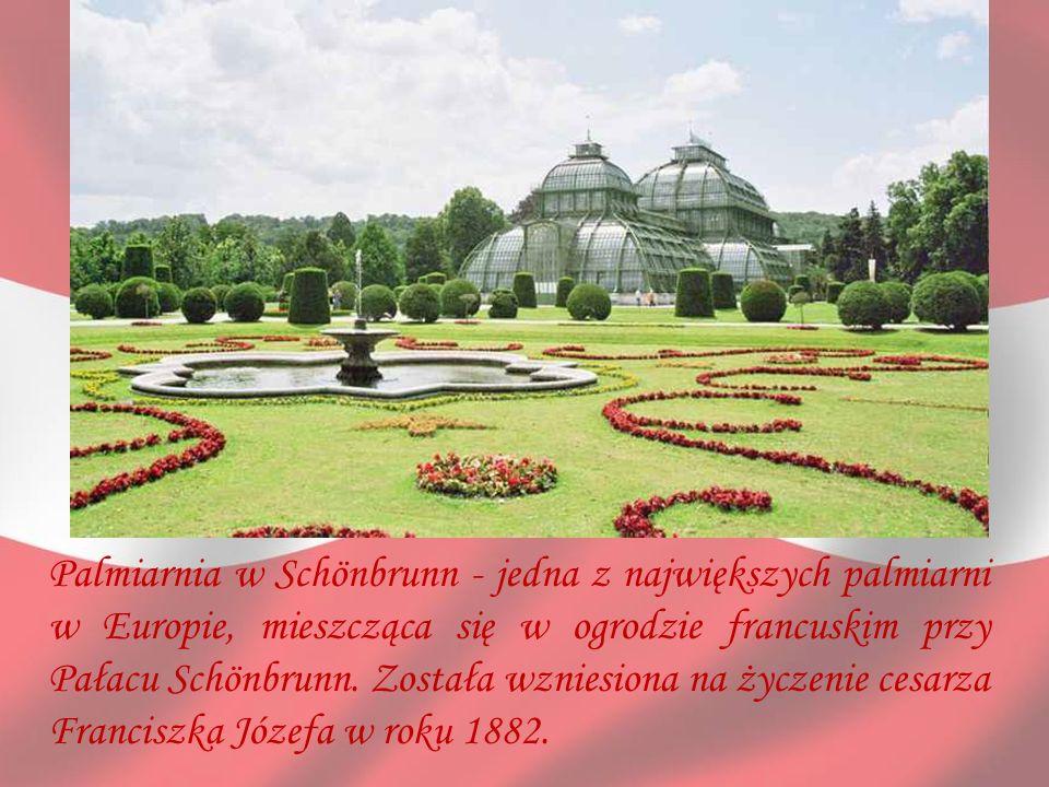 Palmiarnia w Schönbrunn - jedna z największych palmiarni w Europie, mieszcząca się w ogrodzie francuskim przy Pałacu Schönbrunn. Została wzniesiona na