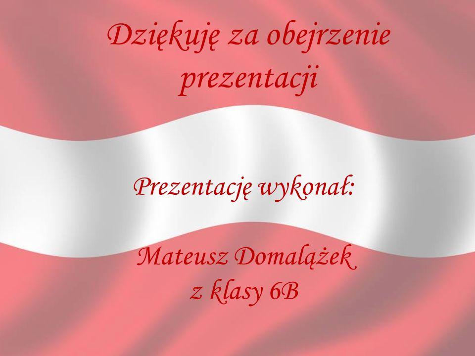 Dziękuję za obejrzenie prezentacji Prezentację wykonał: Mateusz Domalążek z klasy 6B