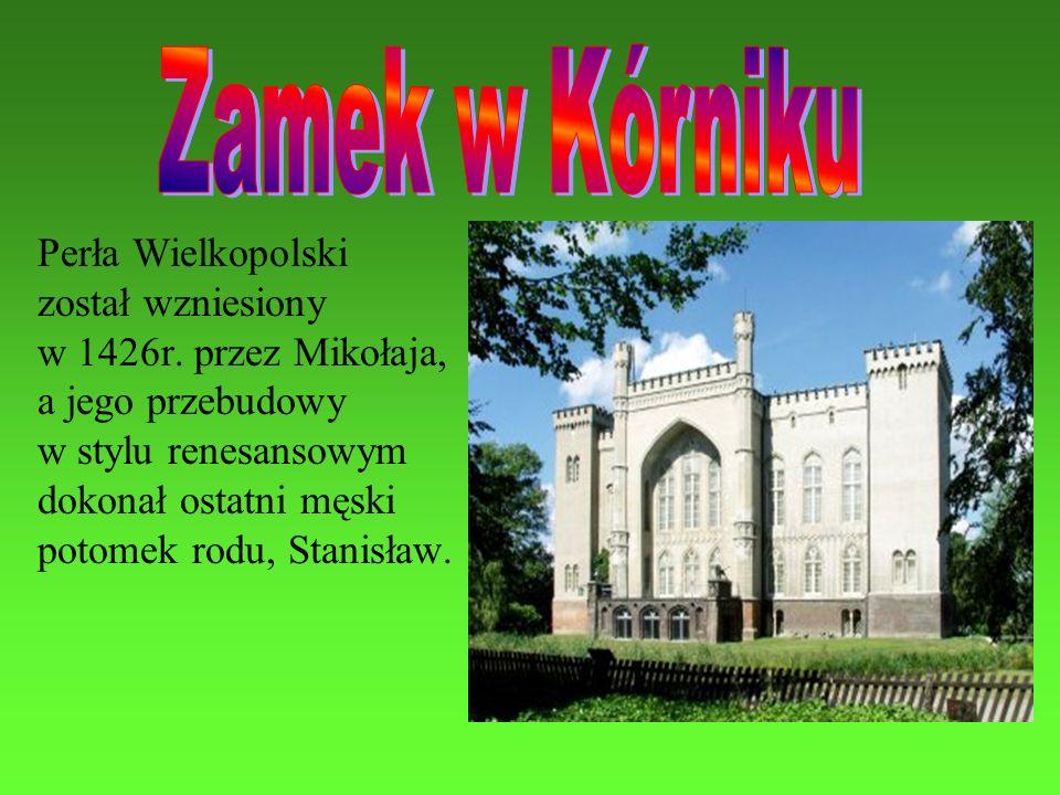 Perła Wielkopolski został wzniesiony w 1426r. przez Mikołaja, a jego przebudowy w stylu renesansowym dokonał ostatni męski potomek rodu, Stanisław.