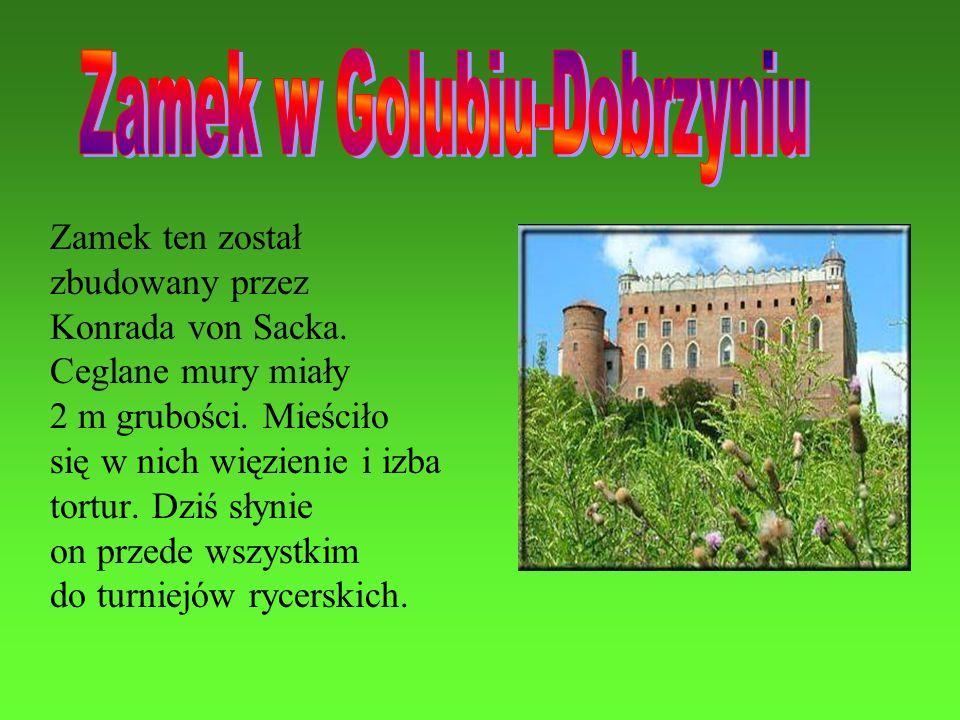 Zamek ten został zbudowany przez Konrada von Sacka. Ceglane mury miały 2 m grubości. Mieściło się w nich więzienie i izba tortur. Dziś słynie on przed