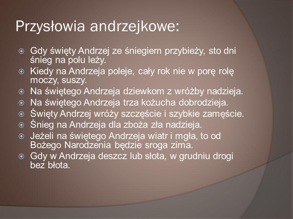 Przysłowia andrzejkowe: Gdy święty Andrzej ze śniegiem przybieży, sto dni śnieg na polu leży. Kiedy na Andrzeja poleje, cały rok nie w porę rolę moczy