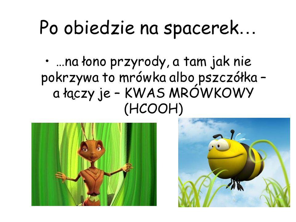 Po obiedzie na spacerek … …na łono przyrody, a tam jak nie pokrzywa to mrówka albo pszczółka – a łączy je – KWAS MRÓWKOWY (HCOOH)