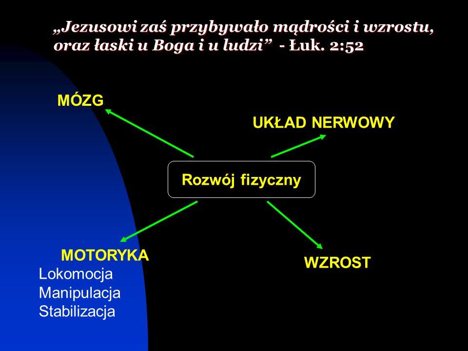 Jezusowi zaś przybywało mądrości i wzrostu, oraz łaski u Boga i u ludzi - Łuk. 2:52 Rozwój fizyczny MÓZG UKŁAD NERWOWY WZROST MOTORYKA Lokomocja Manip