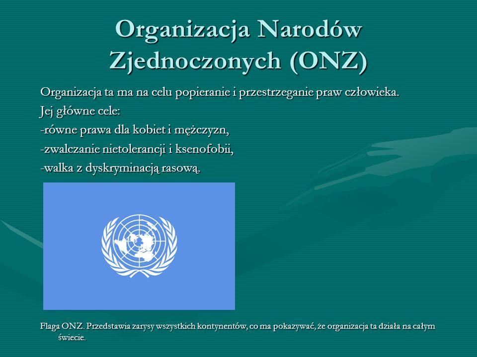 Organizacja Narodów Zjednoczonych (ONZ) Organizacja ta ma na celu popieranie i przestrzeganie praw człowieka. Jej główne cele: -równe prawa dla kobiet
