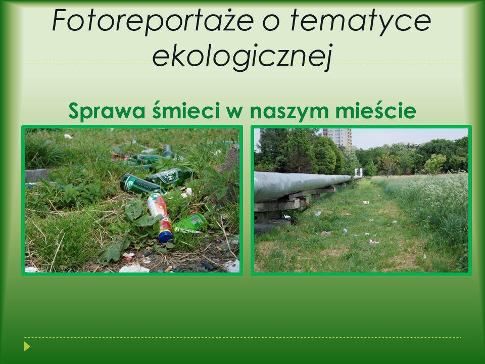 Fotoreportaże o tematyce ekologicznej Sprawa śmieci w naszym mieście