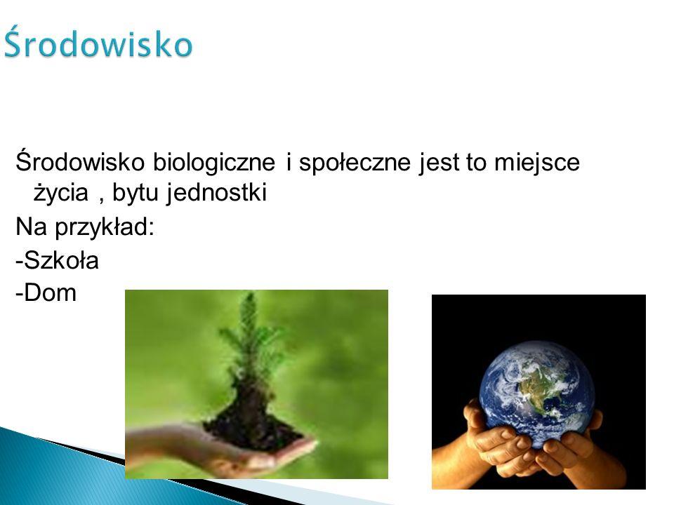 Środowisko Środowisko biologiczne i społeczne jest to miejsce życia, bytu jednostki Na przykład: -Szkoła -Dom