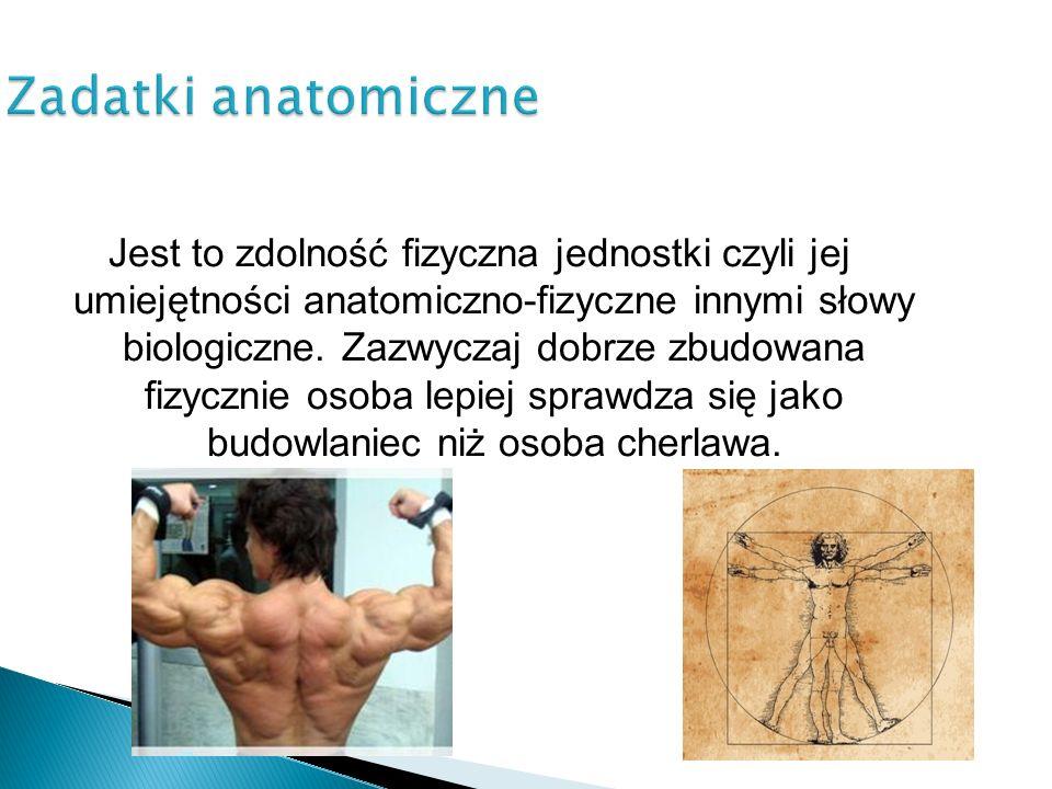 Zadatki anatomiczne Jest to zdolność fizyczna jednostki czyli jej umiejętności anatomiczno-fizyczne innymi słowy biologiczne. Zazwyczaj dobrze zbudowa