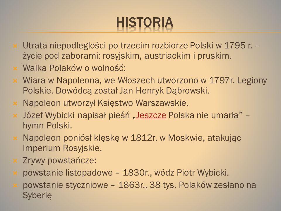Utrata niepodleglości po trzecim rozbiorze Polski w 1795 r.