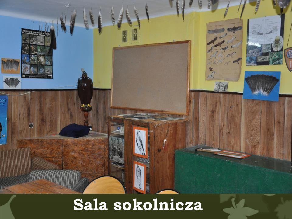 Sala sokolnicza