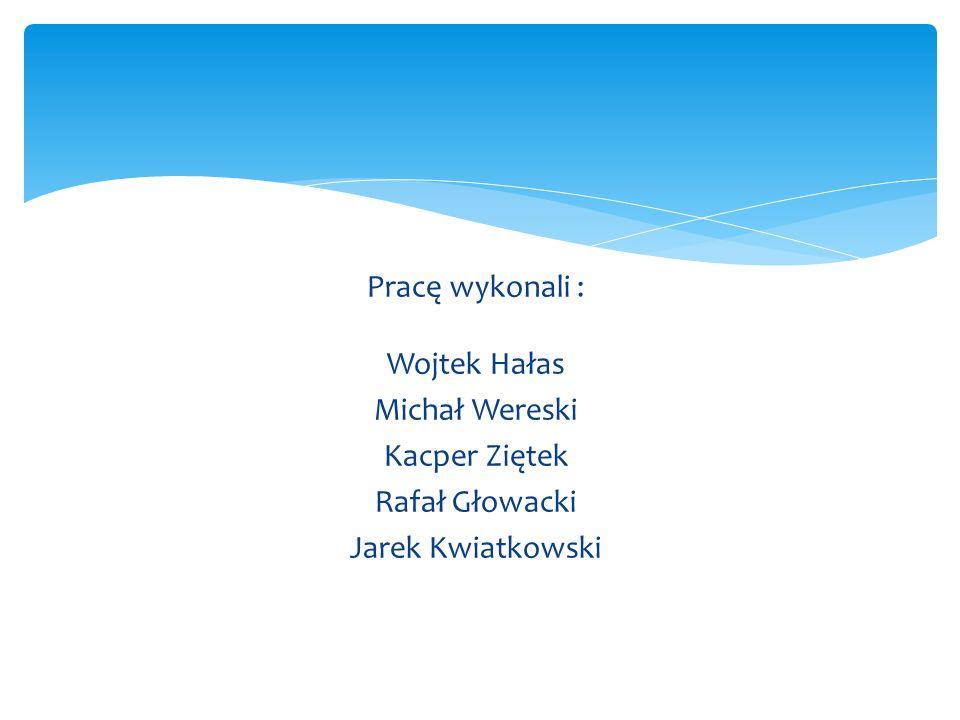 Pracę wykonali : Wojtek Hałas Michał Wereski Kacper Ziętek Rafał Głowacki Jarek Kwiatkowski