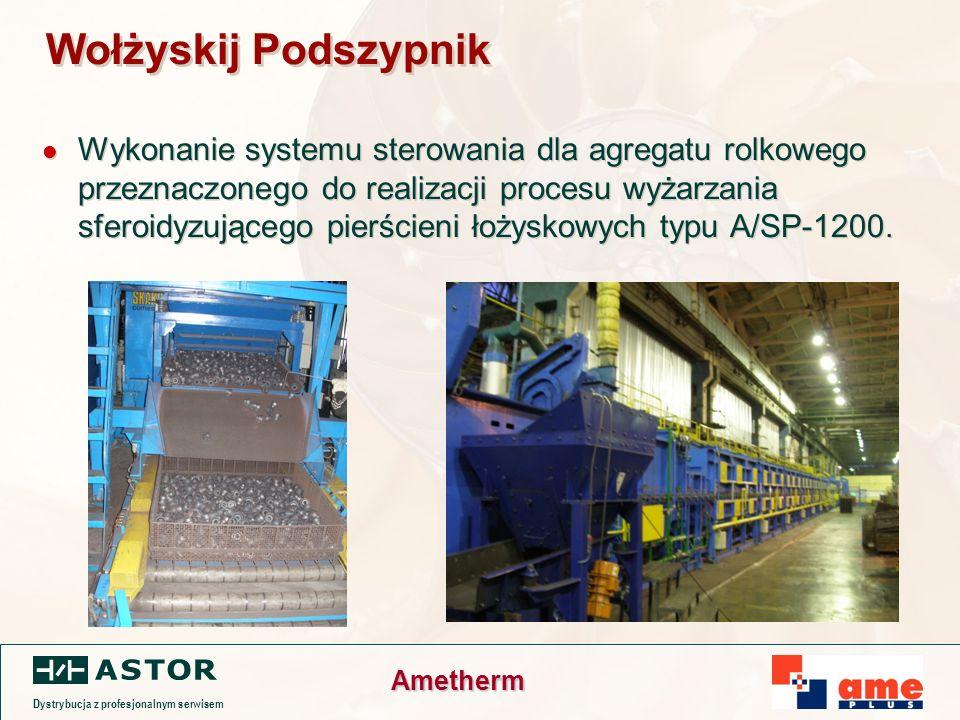 Dystrybucja z profesjonalnym serwisem Ametherm Wołżyskij Podszypnik Wykonanie systemu sterowania dla agregatu rolkowego przeznaczonego do realizacji procesu wyżarzania sferoidyzującego pierścieni łożyskowych typu A/SP-1200.