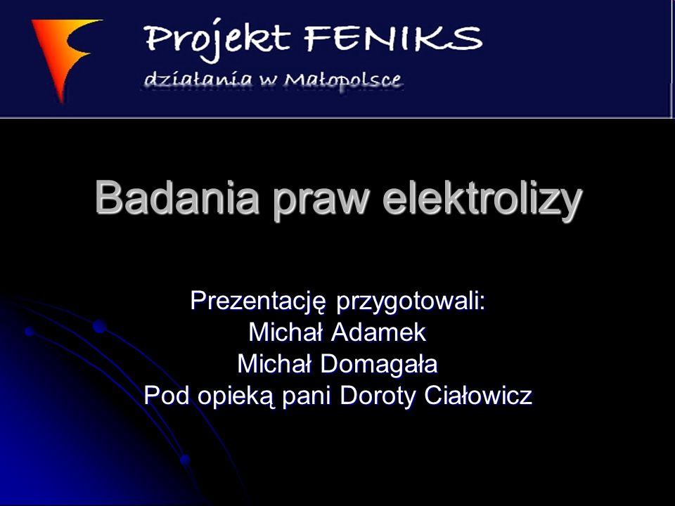 Badania praw elektrolizy Prezentację przygotowali: Michał Adamek Michał Domagała Pod opieką pani Doroty Ciałowicz