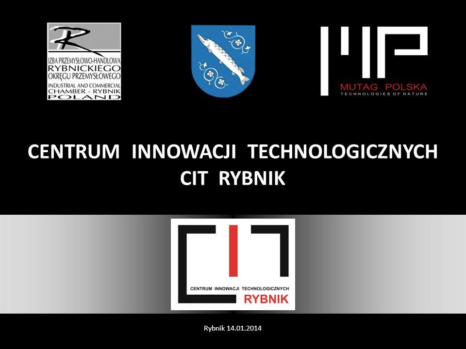 DZIĘKUJEMY ZA UWAGĘ Zapraszamy do dyskusji Rybnik 14.01.2014 Organizacja na terenie miasta Rybnika Centrum Innowacji Technologicznych