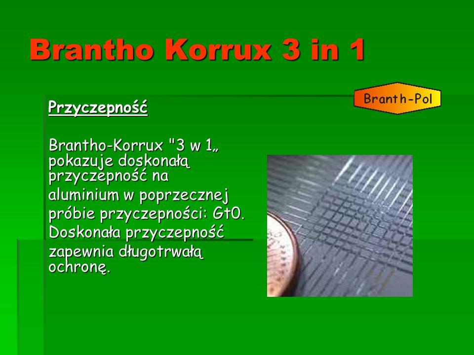 Brantho Korrux 3 in 1 Przyczepność Brantho-Korrux