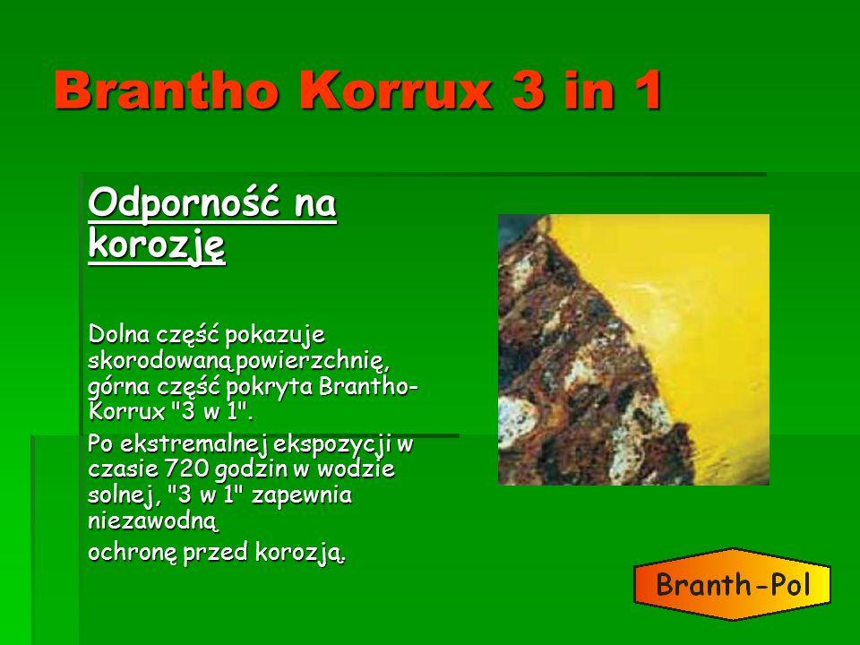 Brantho Korrux 3 in 1 Odporność na korozję Dolna część pokazuje skorodowaną powierzchnię, górna część pokryta Brantho- Korrux