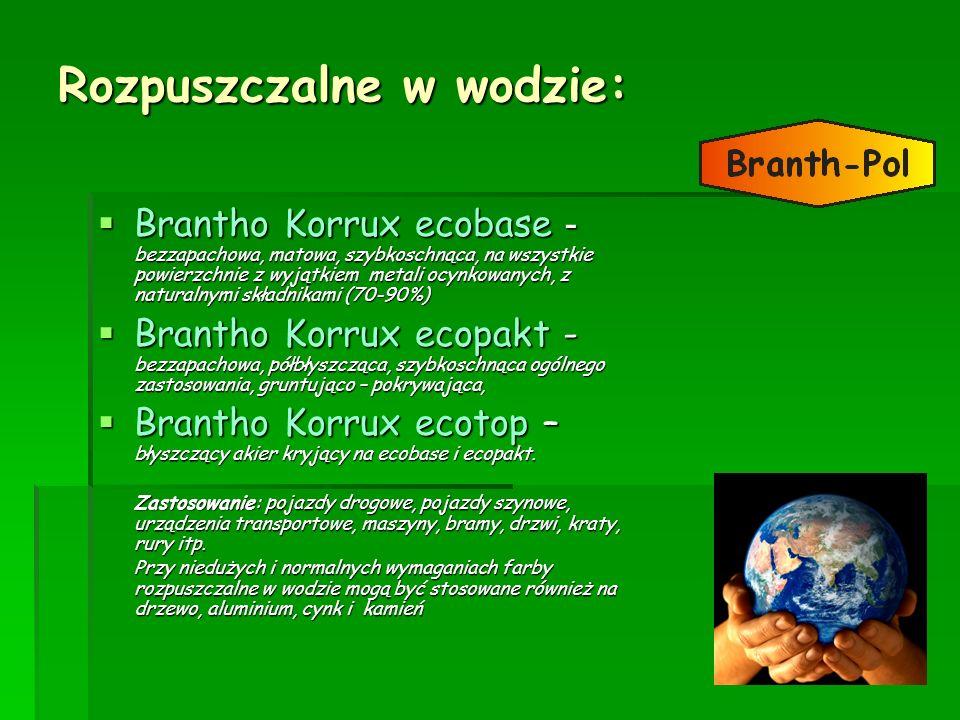Rozpuszczalne w wodzie: Brantho Korrux ecobase - bezzapachowa, matowa, szybkoschnąca, na wszystkie powierzchnie z wyjątkiem metali ocynkowanych, z nat