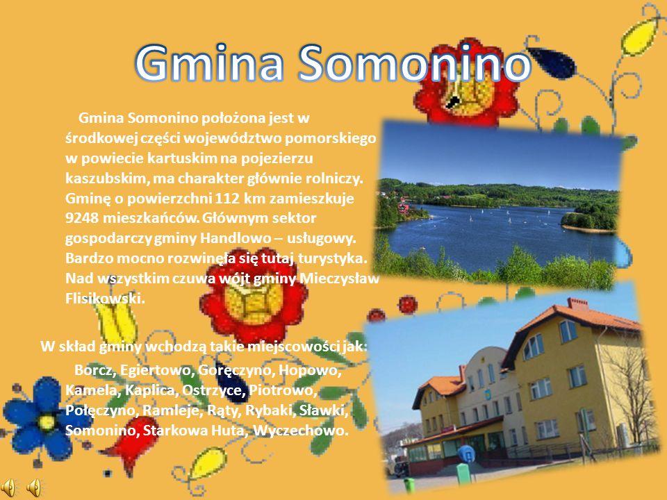 Gmina Somonino położona jest w środkowej części województwo pomorskiego w powiecie kartuskim na pojezierzu kaszubskim, ma charakter głównie rolniczy.