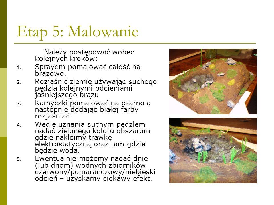 Etap 5: Malowanie Należy postępować wobec kolejnych kroków: 1. Sprayem pomalować całość na brązowo. 2. Rozjaśnić ziemię używając suchego pędzla kolejn