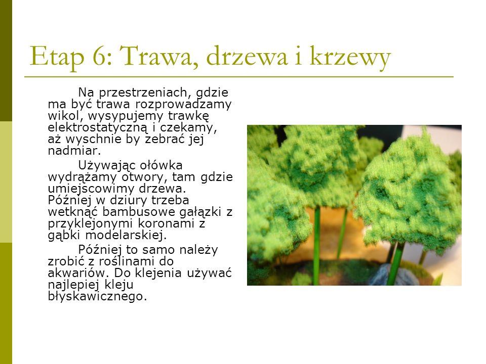 Etap 6: Trawa, drzewa i krzewy Na przestrzeniach, gdzie ma być trawa rozprowadzamy wikol, wysypujemy trawkę elektrostatyczną i czekamy, aż wyschnie by