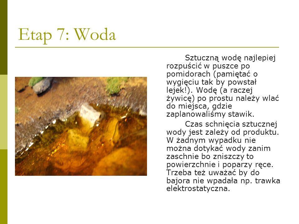 Etap 7: Woda Sztuczną wodę najlepiej rozpuścić w puszce po pomidorach (pamiętać o wygięciu tak by powstał lejek!). Wodę (a raczej żywicę) po prostu na
