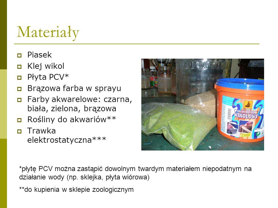 Materiały Piasek Klej wikol Płyta PCV* Brązowa farba w sprayu Farby akwarelowe: czarna, biała, zielona, brązowa Rośliny do akwariów** Trawka elektrost