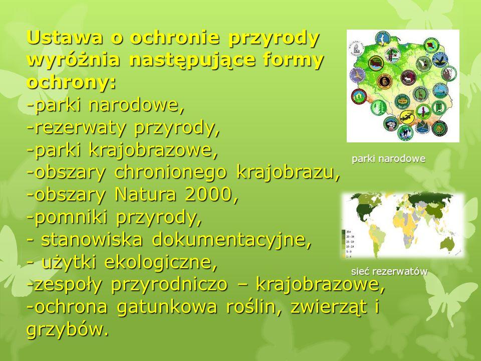 Ustawa o ochronie przyrody wyróżnia następujące formy ochrony: -parki narodowe, -rezerwaty przyrody, -parki krajobrazowe, -obszary chronionego krajobr