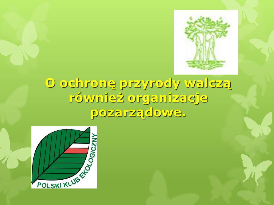 O ochronę przyrody walczą również organizacje pozarządowe.