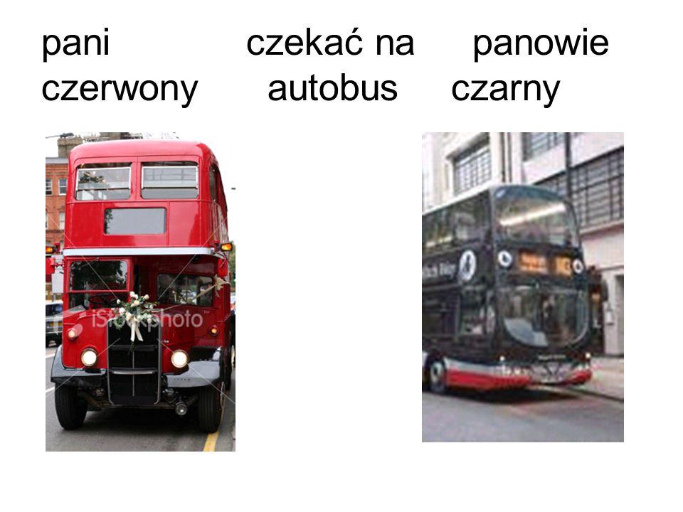 paniczekać na panowie czerwony autobusczarny