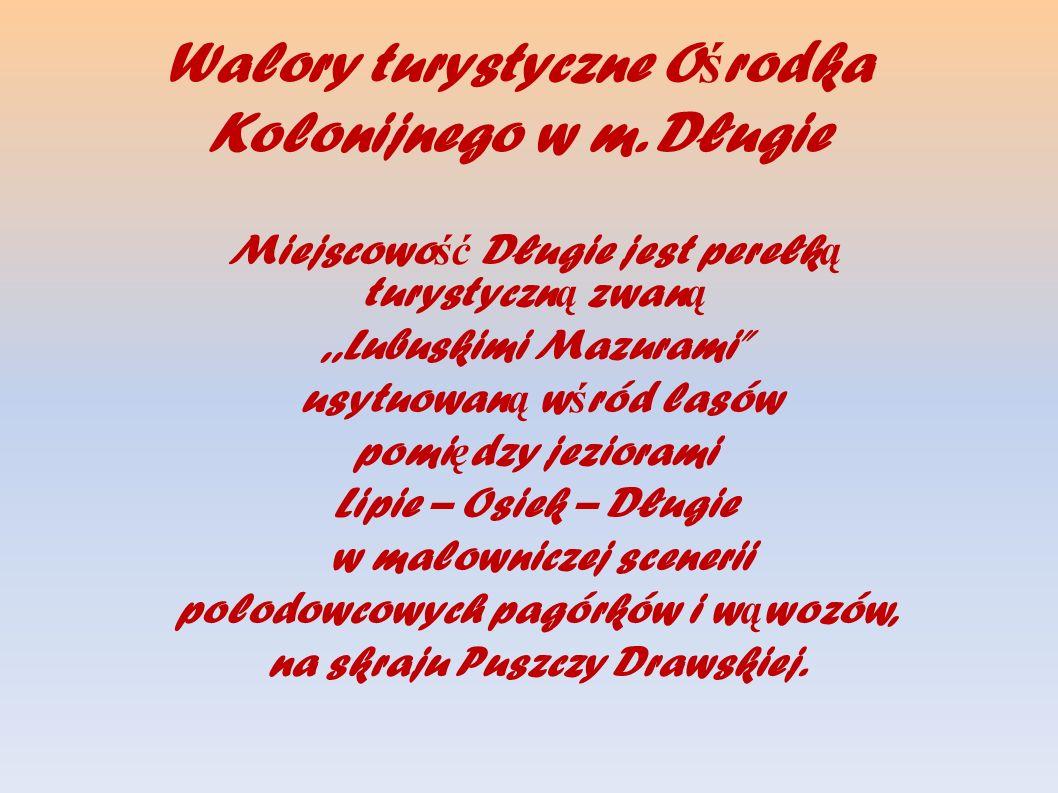 W ci ą gu wakacji wypoczywa tu 1.000 dzieci i młodzie ż y z całej Polski, w tym z woj.