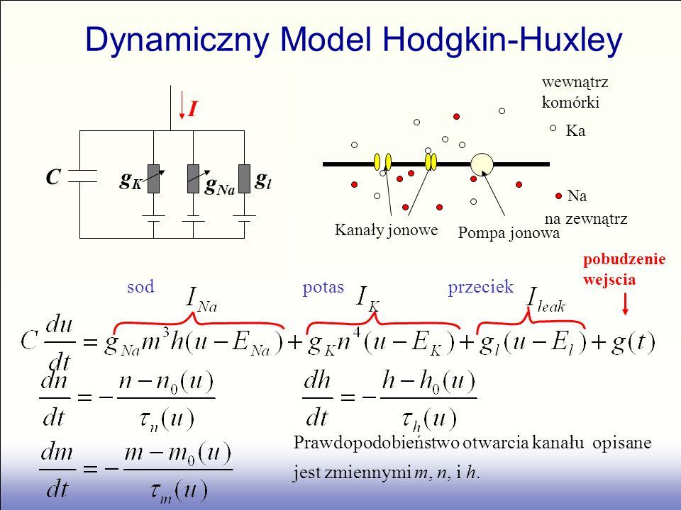 Dynamiczny Model Hodgkin-Huxley 100 mV 0 pobudzenie wejscia Cglgl gKgK g Na I wewnątrz komórki na zewnątrz Ka Na Kanały jonowe Pompa jonowa sod potas