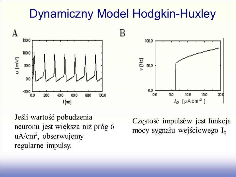 Jeśli wartość pobudzenia neuronu jest większa niż próg 6 uA/cm 2, obserwujemy regularne impulsy. Częstość impulsów jest funkcja mocy sygnału wejściowe
