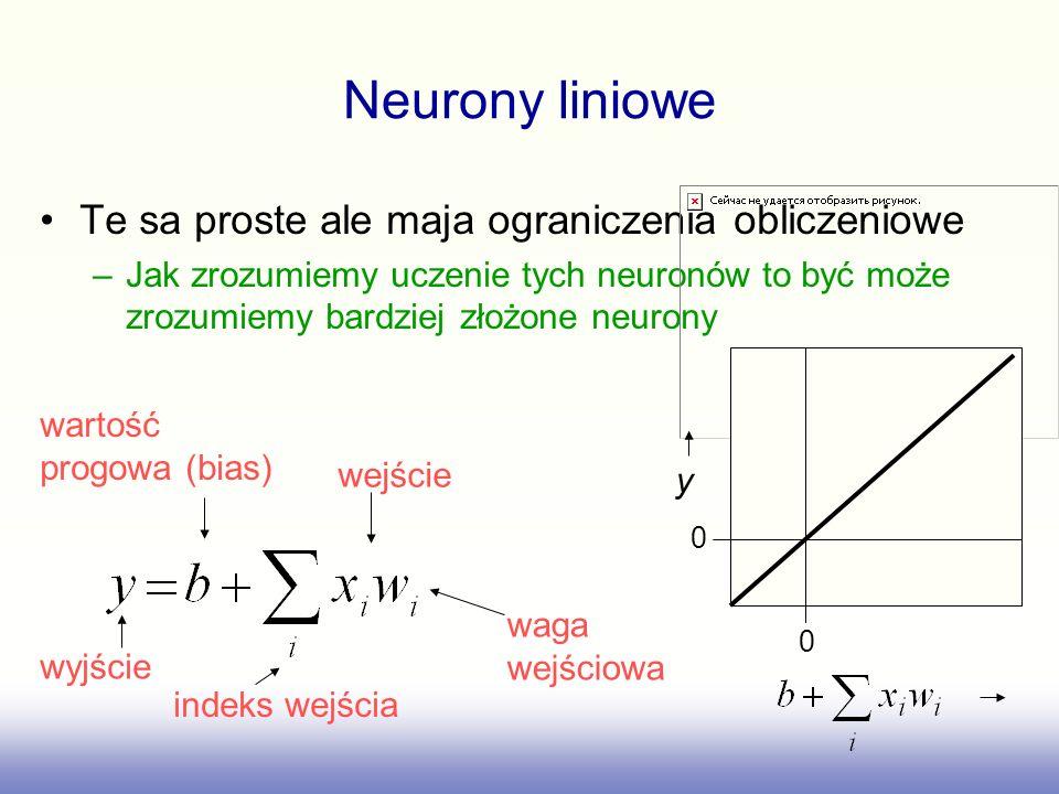 Neurony liniowe Te sa proste ale maja ograniczenia obliczeniowe –Jak zrozumiemy uczenie tych neuronów to być może zrozumiemy bardziej złożone neurony