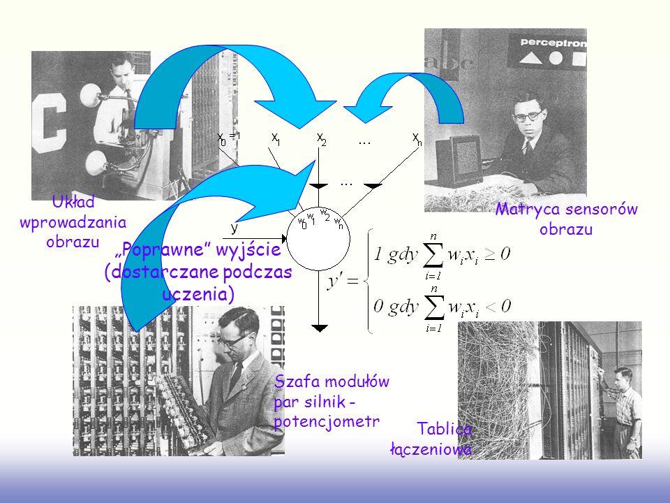 Układ wprowadzania obrazu Matryca sensorów obrazu Szafa modułów par silnik - potencjometr Tablica łączeniowa Poprawne wyjście (dostarczane podczas ucz
