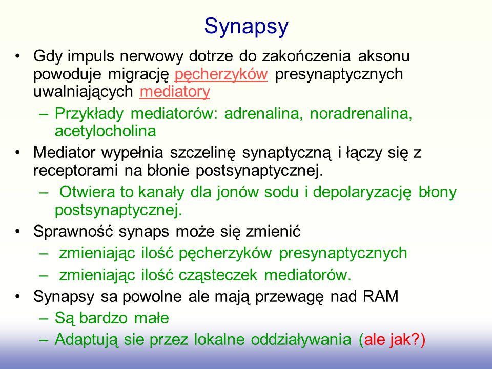 Synapsy Połączenie synaptyczne: 1-mitochondriummitochondrium 2-pęcherzyki presynaptyczne z neurotransmiterempęcherzyki neurotransmiterem 3-kanał wapniowy,kanał wapniowy 4-szczelina synaptycznaszczelina synaptyczna 5-neuroreceptor 8- receptor zwrotnego wychwytu mediatora