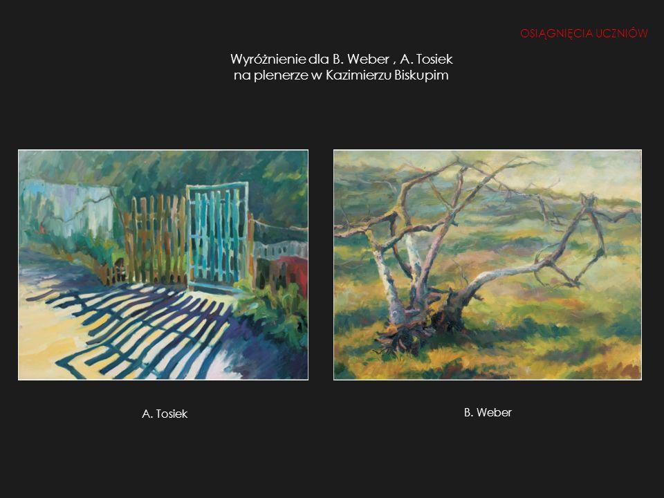 Wyróżnienie dla B. Weber, A. Tosiek na plenerze w Kazimierzu Biskupim OSIĄGNIĘCIA UCZNIÓW B. Weber A. Tosiek B. Weber
