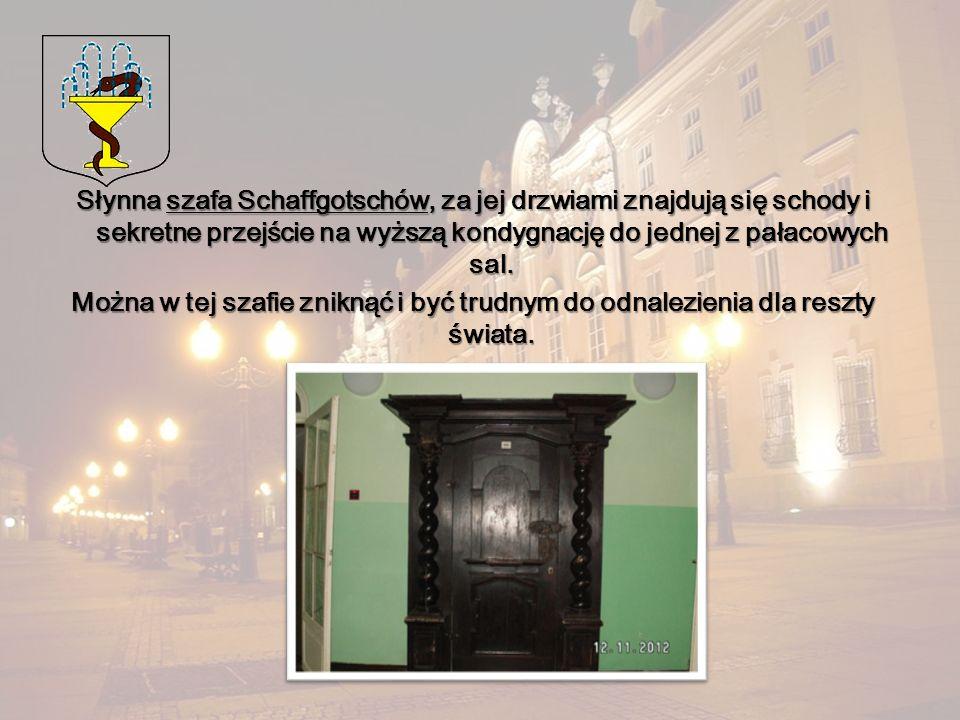 Słynna szafa Schaffgotschów, za jej drzwiami znajdują się schody i sekretne przejście na wyższą kondygnację do jednej z pałacowych sal. Można w tej sz